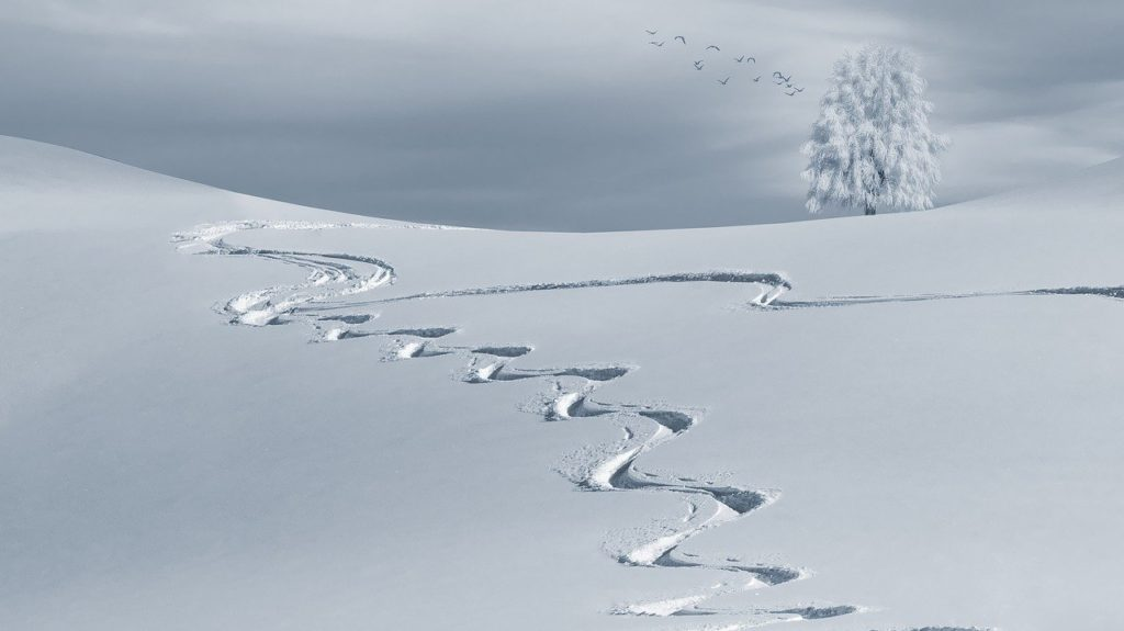 wintry, backcountry skiiing, ski tracks